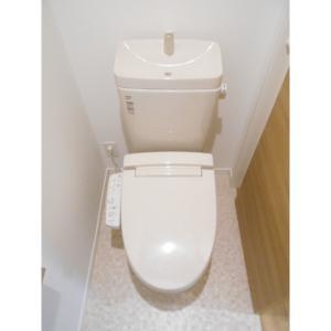 雅 部屋写真5 トイレ