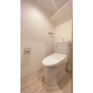 ロジェ石川台 部屋写真4 トイレ