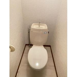 リンデンハイム生実野 部屋写真5 トイレ