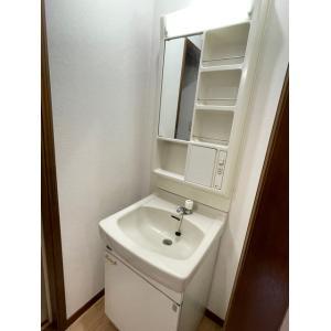 リンデンハイム生実野Ⅱ 部屋写真4 洗面所