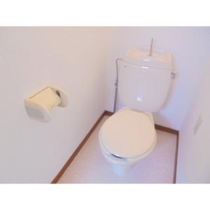 サティオ・ハイドランジア 部屋写真4 トイレ