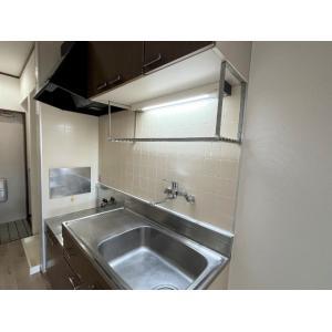 サティオ・ハイドランジア 部屋写真2 キッチン