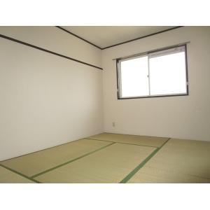 サンハイツしかのⅡ 部屋写真5 洗面所