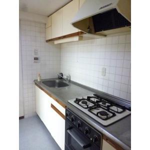 野毛ガーデンホーム 部屋写真2 キッチン
