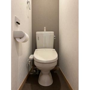 ルミナス成城 部屋写真5 トイレ