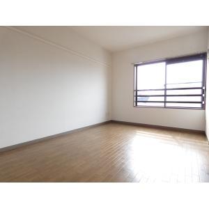 メゾン・ルオール 部屋写真1 居室・リビング