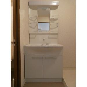 メゾン・ルオール 部屋写真4 洗面所