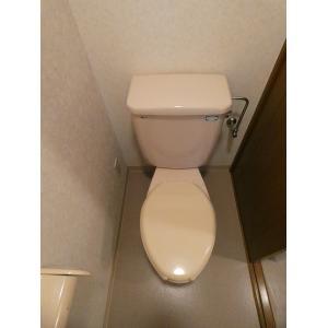 メゾン・ルオール 部屋写真6 トイレ
