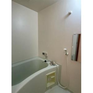 ピアチューレ 部屋写真3 洗面所