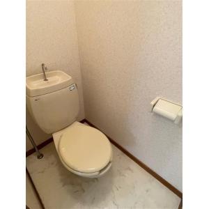 ピアチューレ 部屋写真5 トイレ