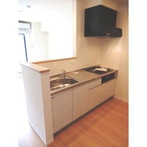 アイルノーブル 部屋写真2 キッチン
