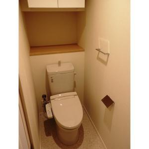 アイルノーブル 部屋写真4 トイレ