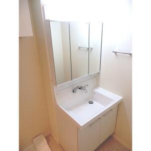 アイルノーブル 部屋写真6 洗面所