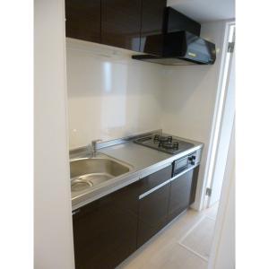 アネシスⅡ 部屋写真3 キッチン