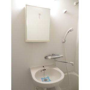 プロシード新横浜 部屋写真4 洗面所