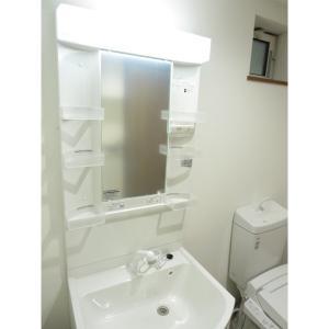 リリーフォレスト 部屋写真4 洗面所