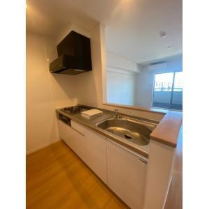 仮称)大瀬3丁目計画 部屋写真1 居室・リビング