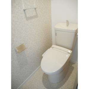 カストール 部屋写真4 トイレ