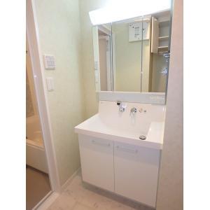 ディオフォンテ 部屋写真5 洗面所