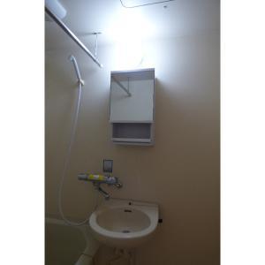 メゾン・ド・キャロル 部屋写真4 洗面所