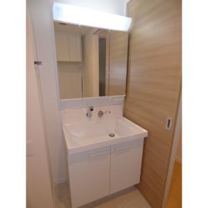 グラン・ボヌール 部屋写真4 洗面所