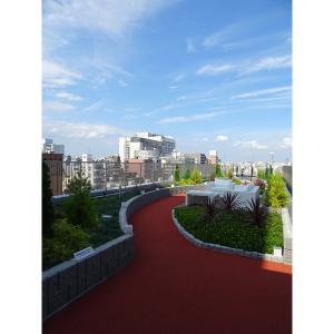 江東区毛利2丁目 マンション 物件写真3 屋上庭園