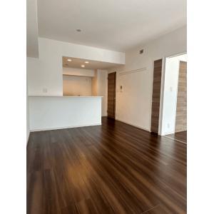 ラフォンテ渋谷3丁目 部屋写真1 居室・リビング