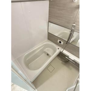 ラフォンテ渋谷3丁目 部屋写真3 トイレ