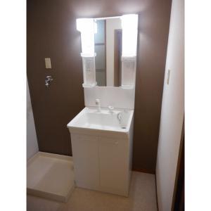 ミーティス 部屋写真5 洗面所