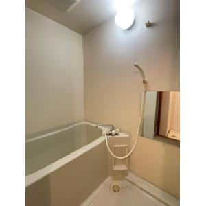 パルームSS 部屋写真3 洗面所