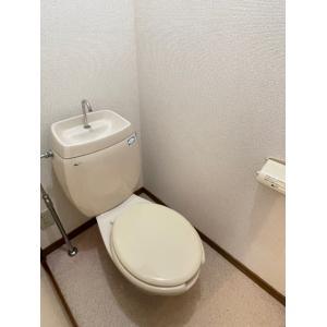 パルームSS 部屋写真5 トイレ