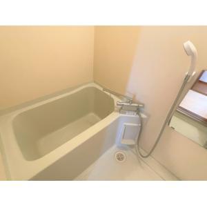 シュトラール 部屋写真3 その他部屋・スペース