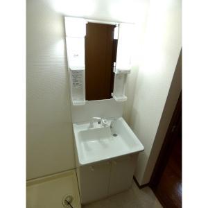 サティオ東野 弐番館 部屋写真4 洗面所