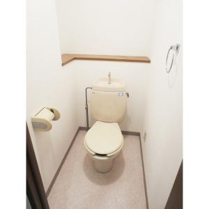 グランドタワー 部屋写真4 トイレ