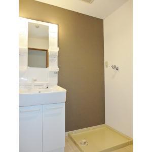 メゾン・アベニール 部屋写真2 洗面所