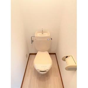 グランディールA 部屋写真5 トイレ