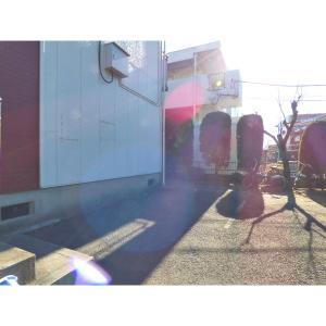 サカエハイツ 物件写真4 駐車場