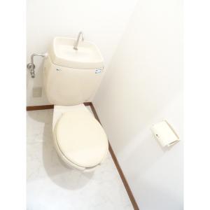ロイヤルヒルズ五番館 部屋写真4 トイレ