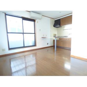 クレストリッジ・プレイス1 部屋写真1 居室・リビング
