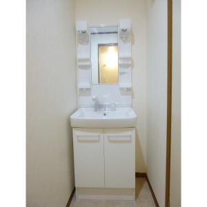 ビーエスハイツE 部屋写真5 洗面所