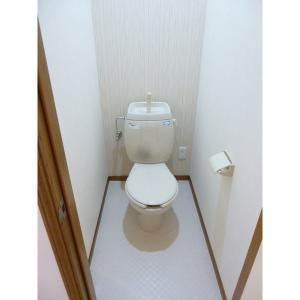 ビーエスハイツE 部屋写真6 トイレ
