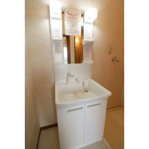 メゾン・ボヌール 部屋写真4 洗面所