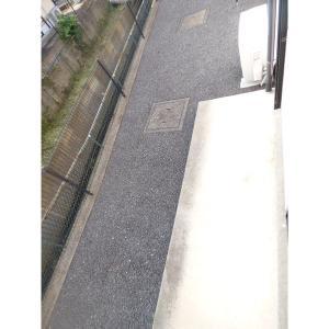 クォーレSAIWAI弐番館 部屋写真8 その他部屋・スペース