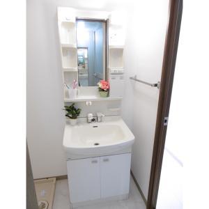 シュール 部屋写真4 独立洗面台