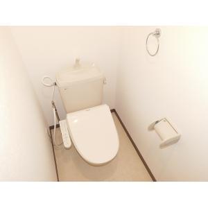 スカイキャッスル 部屋写真5 トイレ