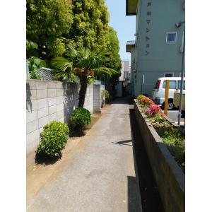 江戸川マンション 物件写真2 エントランス