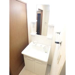 プロシードCO-Z西館 部屋写真4 洗面所