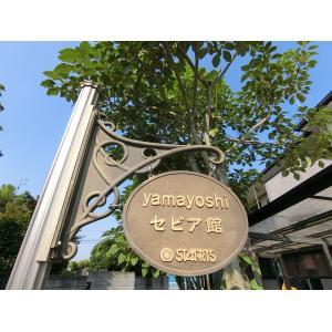 Yamayoshi セピア館 物件写真3 駐車場