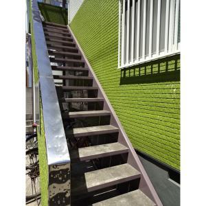 ヴェルデ西瑞江 物件写真5 階段