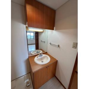ピアチェーレ 部屋写真4 洗面所